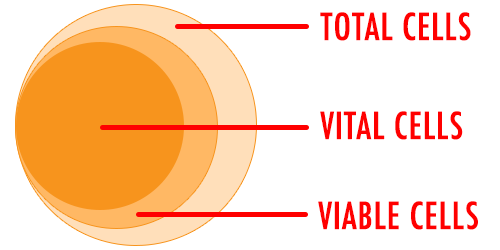 The most important tool for a brewer is the viability cell count.